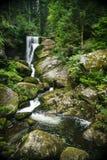 Forest Falls nero in Trieberg, Germania Fotografia Stock Libera da Diritti