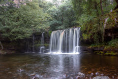 Forest Falls, United Kingdom, England Stock Image