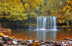 Forest Falls, United Kingdom, England royalty free stock photos