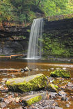 Forest Falls, United Kingdom, England Royalty Free Stock Photography