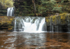 Forest Falls, United Kingdom, England stock images