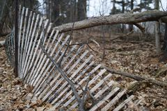 Forest fence leaning and falling stock photo