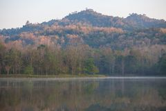 The forest in fertile spring and beautiful. Refect the water closely divisibly stock images