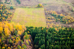 Forest and field from above Stock Photo