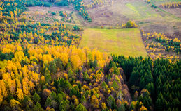 Forest and field from above Royalty Free Stock Photography