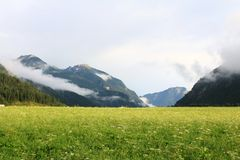 Forest and field in Achenkirch - Tyrol,  Austria Stock Image