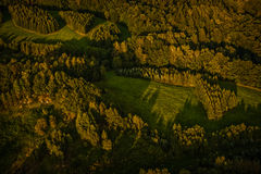 Forest and field from balloon Stock Images