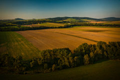 Forest and field from balloon Royalty Free Stock Photos