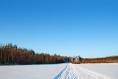 Forest, field and ski track with white snow at winter day Royalty Free Stock Photography