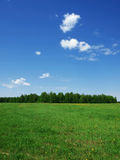 Summer landscape in Central Russia Stock Photos