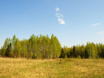 Spring landscape in Central Russia Stock Images