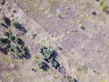 Forest and field with a trail aerial photography. Aerial view on rural pasture in evening light with dramatic shadow Stock Photos