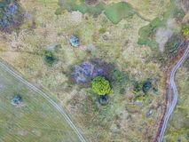 Forest and field with a trail aerial photography. Aerial view on rural pasture in evening light with dramatic shadow Royalty Free Stock Images