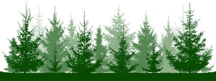 Forest fir trees silhouette. Christmas tree. stock illustration