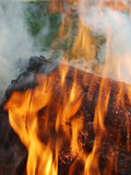 Forest Fire 01. A close-up shot of heart-warming fire in a forest at picnic with friends Royalty Free Stock Photography