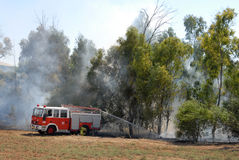 Forest Fire. Firefighters work to extiguish a forest fire Royalty Free Stock Photography