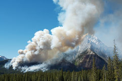 Forest Fire. Burning on mountain slopes in the Canadian Rockies Royalty Free Stock Photo