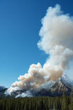 Forest Fire. Burning on mountain slopes in the Canadian Rockies Royalty Free Stock Images