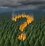 Forest Fire stock illustratie