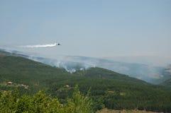 Forest Fire Stock Afbeeldingen