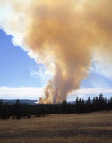 Forest Fire. In eastern Oregon stock photos