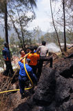 Forest Fire images stock