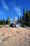 After Forest Fire. Clear blue sky and smoldering tree stump and ashes after a forest fire Stock Photos
