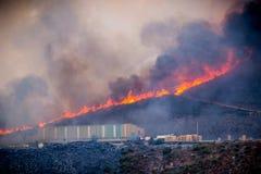 Forest Fire Imagem de Stock Royalty Free