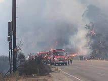 Forest Fire With Big Flames e camion dei vigili del fuoco fotografia stock