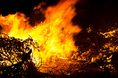 Forest Fire Burning. At Night Stock Image