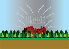 Forest fire that cause haze. Stock Photography