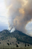 Forest Fire in den Bergen, Nevada Stockfoto