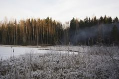 The forest burns in the winter. Fire in the forest. The ignition of peat in the swamp. Burning wood. Smoke in the forest. Dangerou stock image
