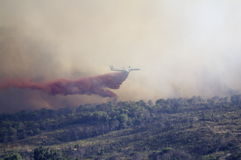 Forest fire fighting Stock Images