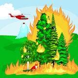 Forest Fire, fire in forest landscape damage, nature ecology disaster, hot burning trees, danger forest fire flame with. Smoke, blaze wood background vector Royalty Free Stock Photos