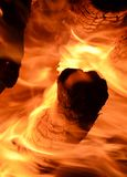 Forest fire. Environmental disaster. fire and flames Royalty Free Stock Image