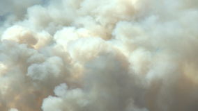 Forest fire with heavy smoke. Smoke from a forest fire in the Canadian Rockies stock video