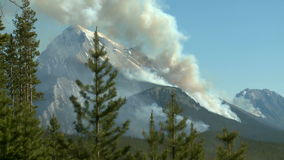 Forest fire with heavy smoke. Distant wildfire on the slopes of a forested mountain in the Canadian Rockies stock video footage