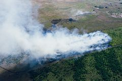 Forest fire in hot summer day, burning dry grass and trees on field, aerial view. From drone royalty free stock image