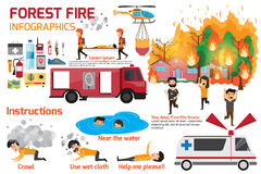Forest Fire infographics. burning forest trees in fire flames -. Natural disaster concept. Concept of Wildfire with people manage to survive. Vector Stock Photo