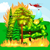 Forest Fire. Forest Fire, fire in forest landscape damage, nature ecology disaster, hot burning trees, danger forest fire flame with smoke, blaze wood Stock Photos