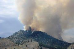 Forest Fire in montagne, Nevada Fotografie Stock Libere da Diritti