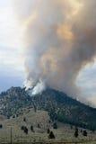 Forest Fire in montagne, Nevada fotografia stock
