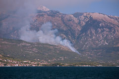 Forest fire in Montenegro Stock Image