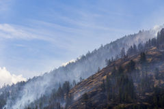 Forest Fire in Mountains of British Columbia, Canada Royalty Free Stock Photos