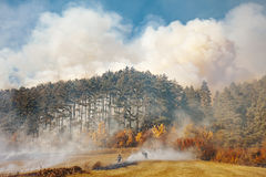 Forest fire, Nature disaster. At hill-side stock images
