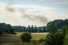 Forest fire, nature disaster. Smoke comes up from a forest fire stock images