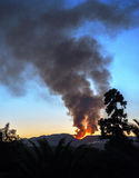 Forest fire near Bedar Village Royalty Free Stock Photography