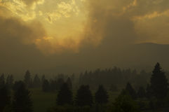 Forest Fire Near a Golf Course Stock Image