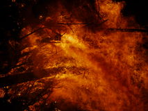 Forest fire at night. Scenic view of trees burning in forest fire at night Royalty Free Stock Images